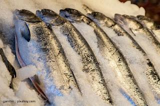 Manfaat Refrigerasi Pada Industri Perikanan