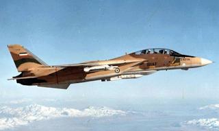 Jet Tempur F-14 AU Iran