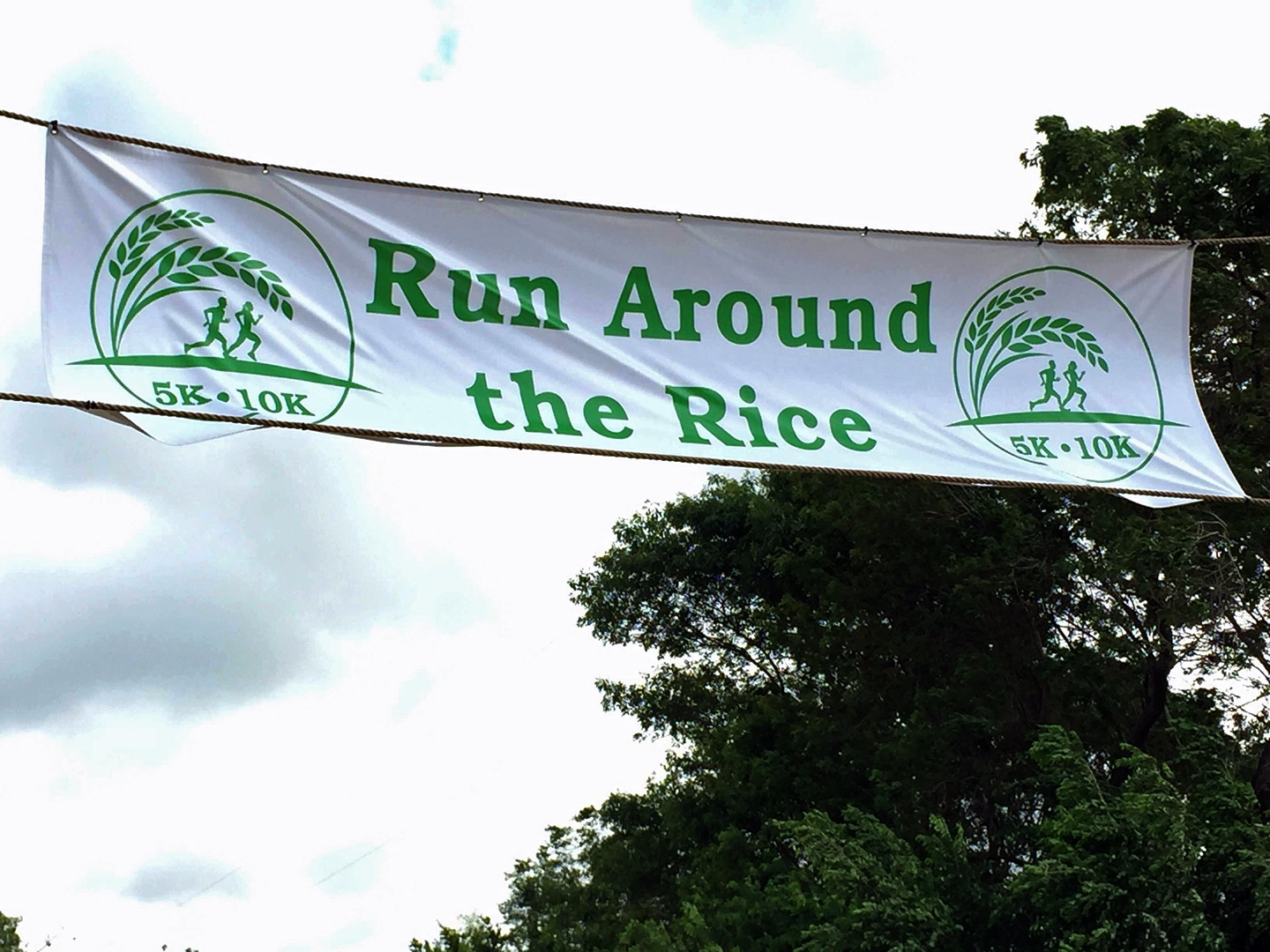 Run around the Rice