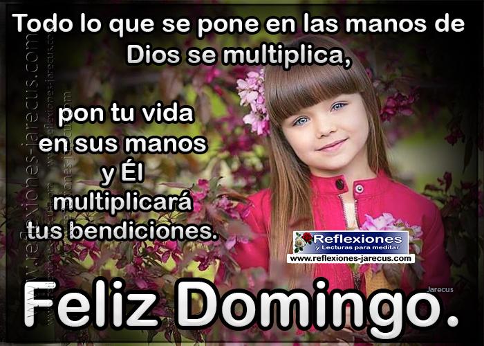 Feliz domingo, todo lo que se pone en las manos de dios se multiplica, pon tu vida en sus manos y él multiplicará tus bendiciones.