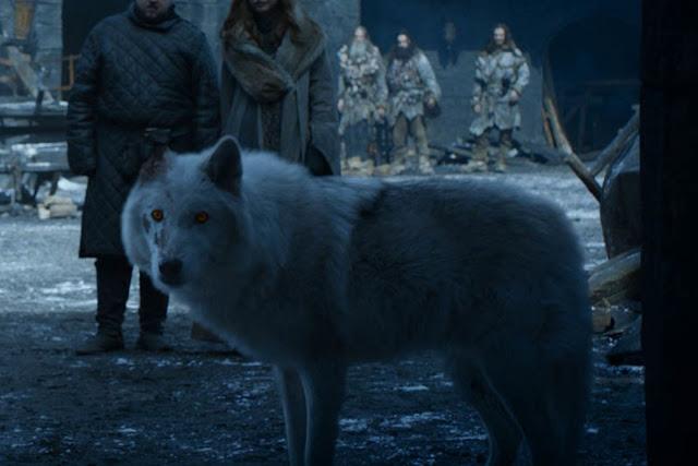 Jon acaricie a su lobo de guerra en el episodio
