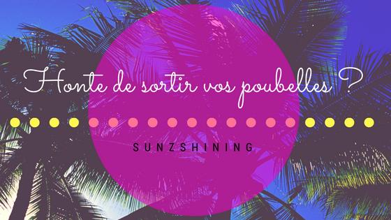 http://sunzshining.blogspot.com/2017/06/honte-de-sortir-vos-poubelles.html