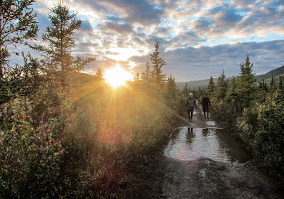 Stampede Trail Alaska Wilderness Travelling