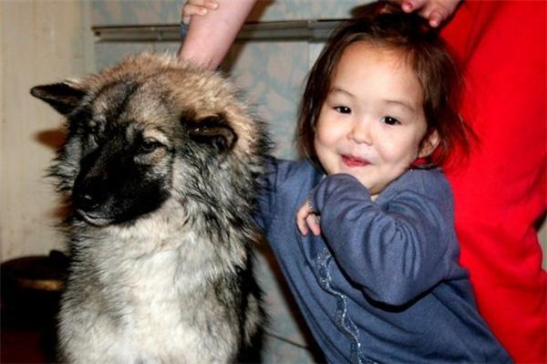 Cô bé được cứu sống nhờ cún cưng
