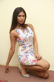 Nishi Ganda stunning cute in Flower Print short dress at Tick Tack Movie Press Meet March 2017 097.JPG