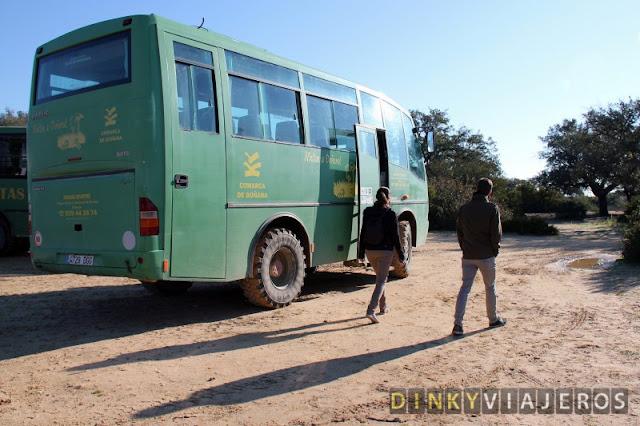 Excursión organizada por Doñana