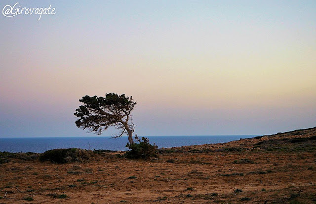 karpathos grecia dodecaneso
