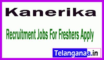 Kanerika Recruitment Jobs For Freshers Apply