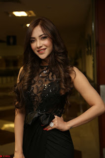 Angela Krislinzki in Transparent Black Gown at Rogue Movie Teaser Launch 1st March 2017 106.JPG