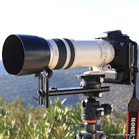 Canon EF 100-400mm f/4.5-5.6 L IS USM Reference