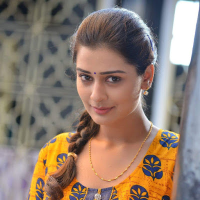 Payal Rajput Biography Biodata Wiki Age