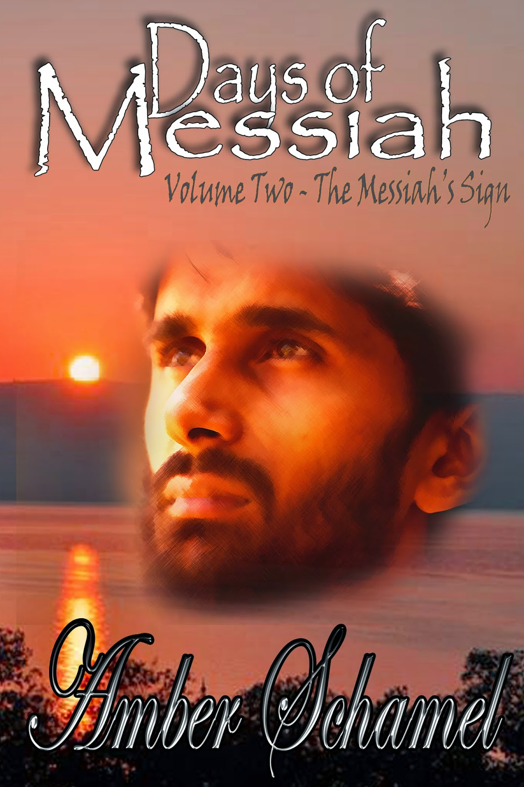 http://www.amazon.com/Days-Messiah-2-Messiahs-Sign-ebook/dp/B00OJ93IB6/ref=sr_1_3?s=digital-text&ie=UTF8&qid=1413400281&sr=1-3&keywords=amber+schamel