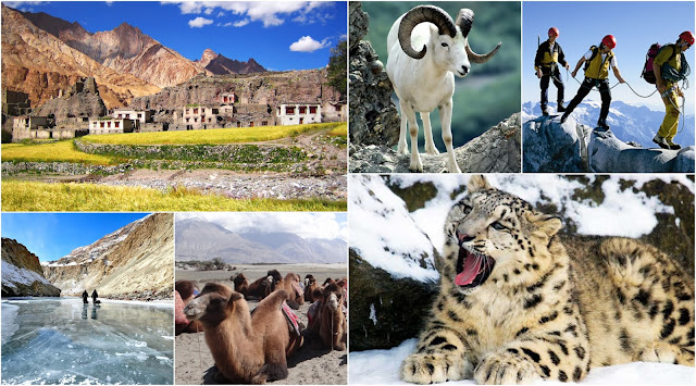 Natural Attraction of Ladakh