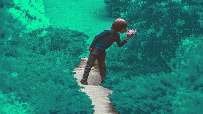 """""""arraste seu filho para o parque mais"""": Crianças cercadas por vegetação podem crescer para serem adultos mais felizes"""