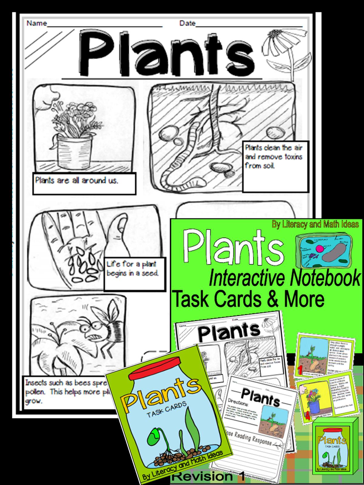 Literacy Amp Math Ideas Plants Interactive Notebook