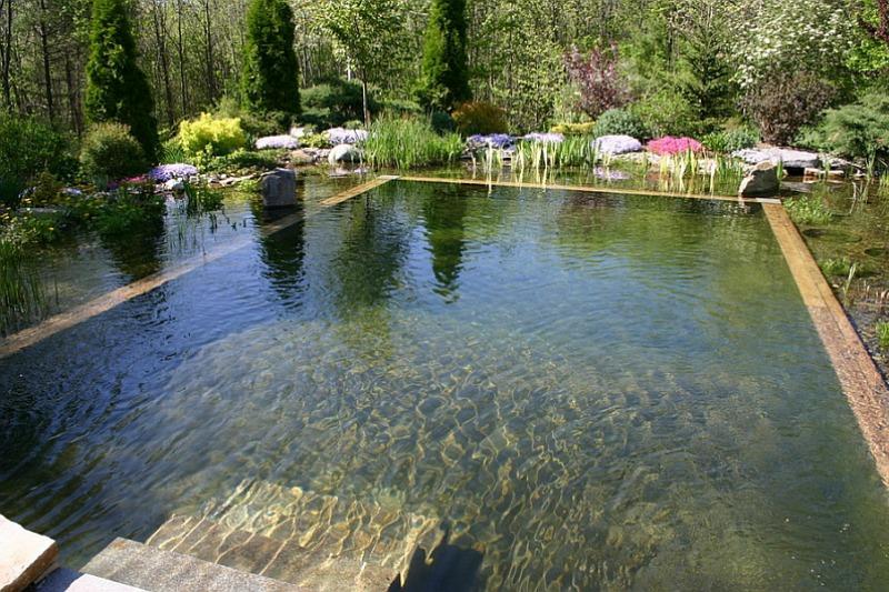 C mo es una piscina natural y ecol gica guia de jardin Piscina natural jardin