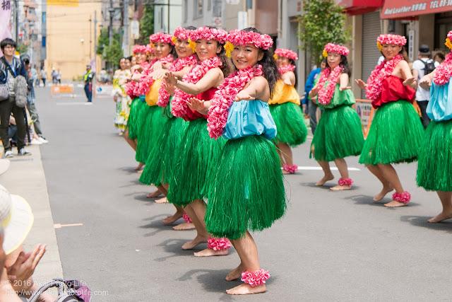 マロニエ祭り、カハレフラ&タヒチスタジオの写真 12