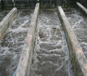 sewage squander articles