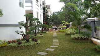 Tukang Taman Bsd,Jasa Pembuatan Taman di Bsd,Jasa Renovasi Taman di Bsd,Tukang Taman Murah dan Profesional Bsd