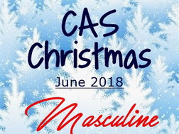 CAS Christmas - Masculine Reminder