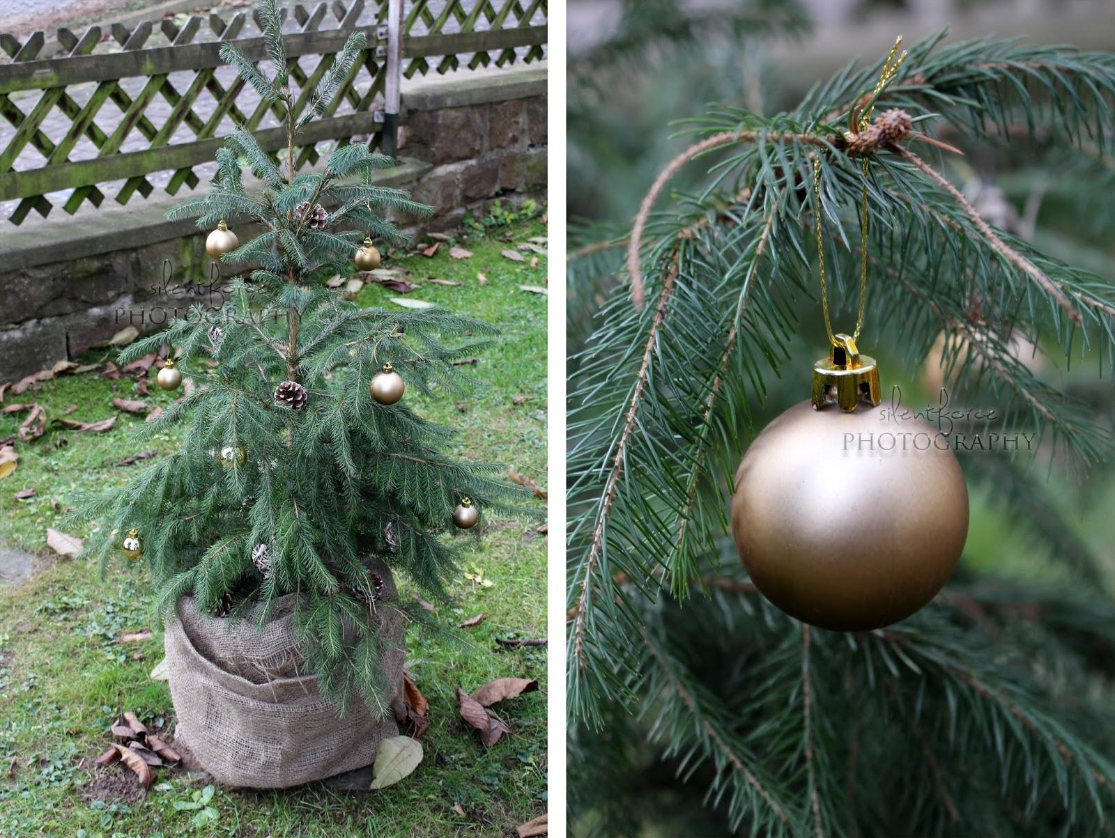 Weihnachtlicher Garten / silentforce garden