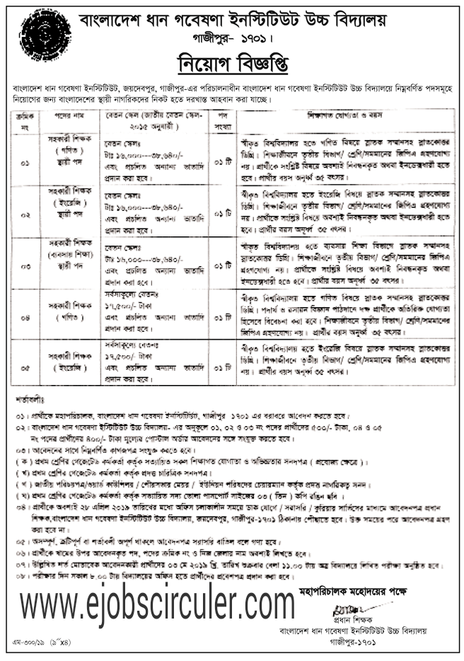 Bangladesh Rice Research Institute Offer Job circular 2019