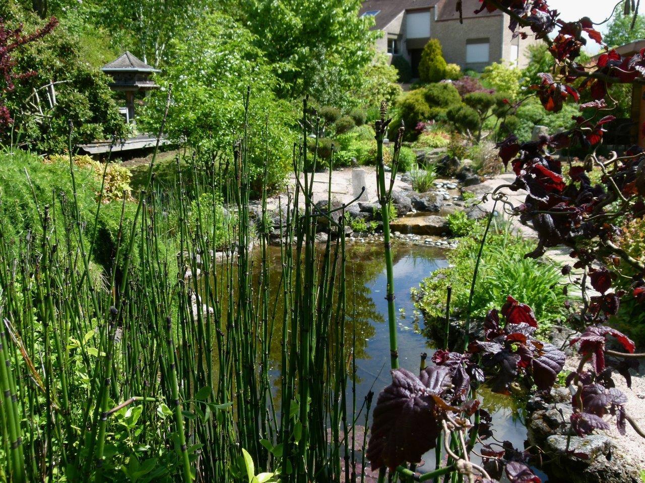 Le blog de parcs et jardins de l 39 oise visite pjo du jardin des monterelles le 19 mai 2016 for Et jardin