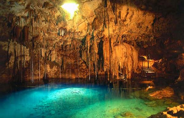 http://wildlifetourisms.blogspot.in