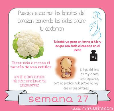 Semana 27 embarazo. Tamaño y evolución del bebé @mimuselina