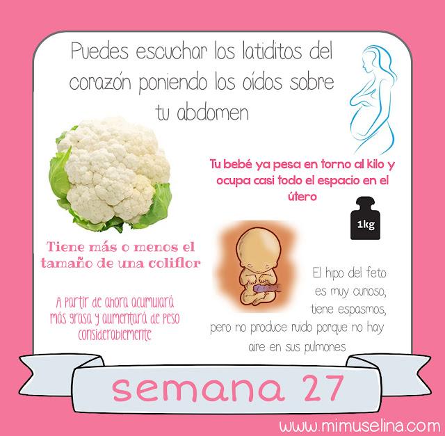 semana a semana del embarazo comparación tamaño bebé fruta embarazada blog mimuselina