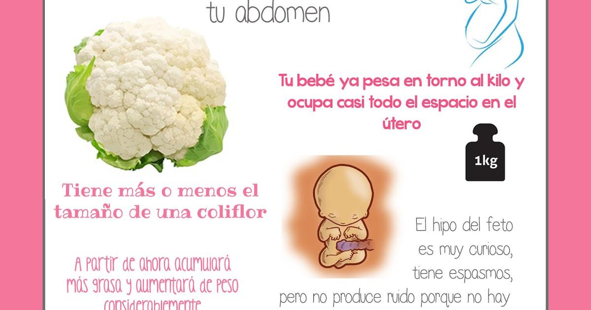 f3da1fc3d BebeBlog by mimuselina  Semana 27 embarazo. Tamaño y evolución del bebé   mimuselina
