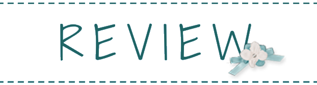 Diy S Books List Review All The Bright Places By Jennifer Niven