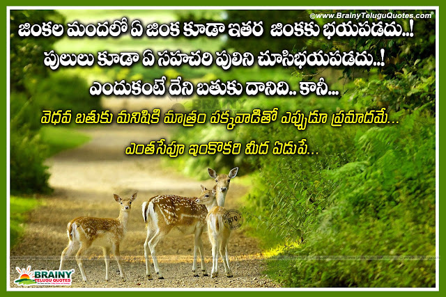 telugu life quotes, best life thoughts in Telugu, Telugu best motivational life success thoughts