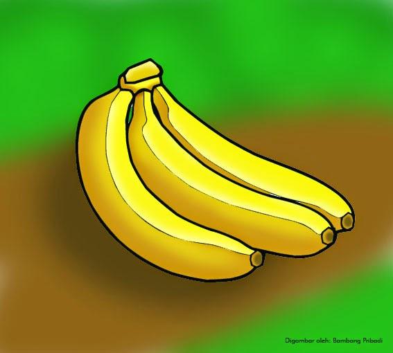 cara mudah mewarnai gambar buah pisang belajar