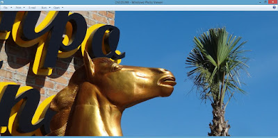 Golden Horse head and palm tree