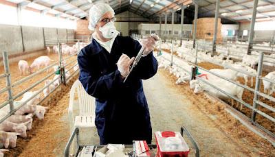 Ζητείται κτηνίατρος από τον Αγροτικό Συνεταιρισμό Θεσπρωτίας - Πρέβεζας