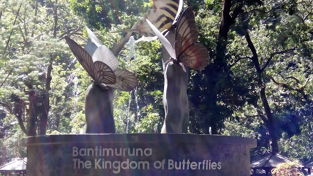 Bantimurung : Kingdom Of Butterfly