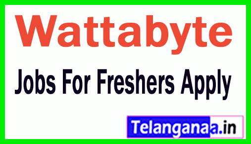 Wattabyte Recruitment Jobs For Freshers Apply
