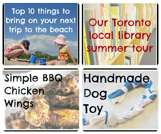 dog toy, chicken wings, beach, libraries