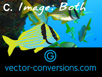 vector graphic and photo for large format printing