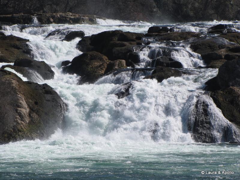 Cascada Rinului de la Schaffhausen - DreamTrips ro
