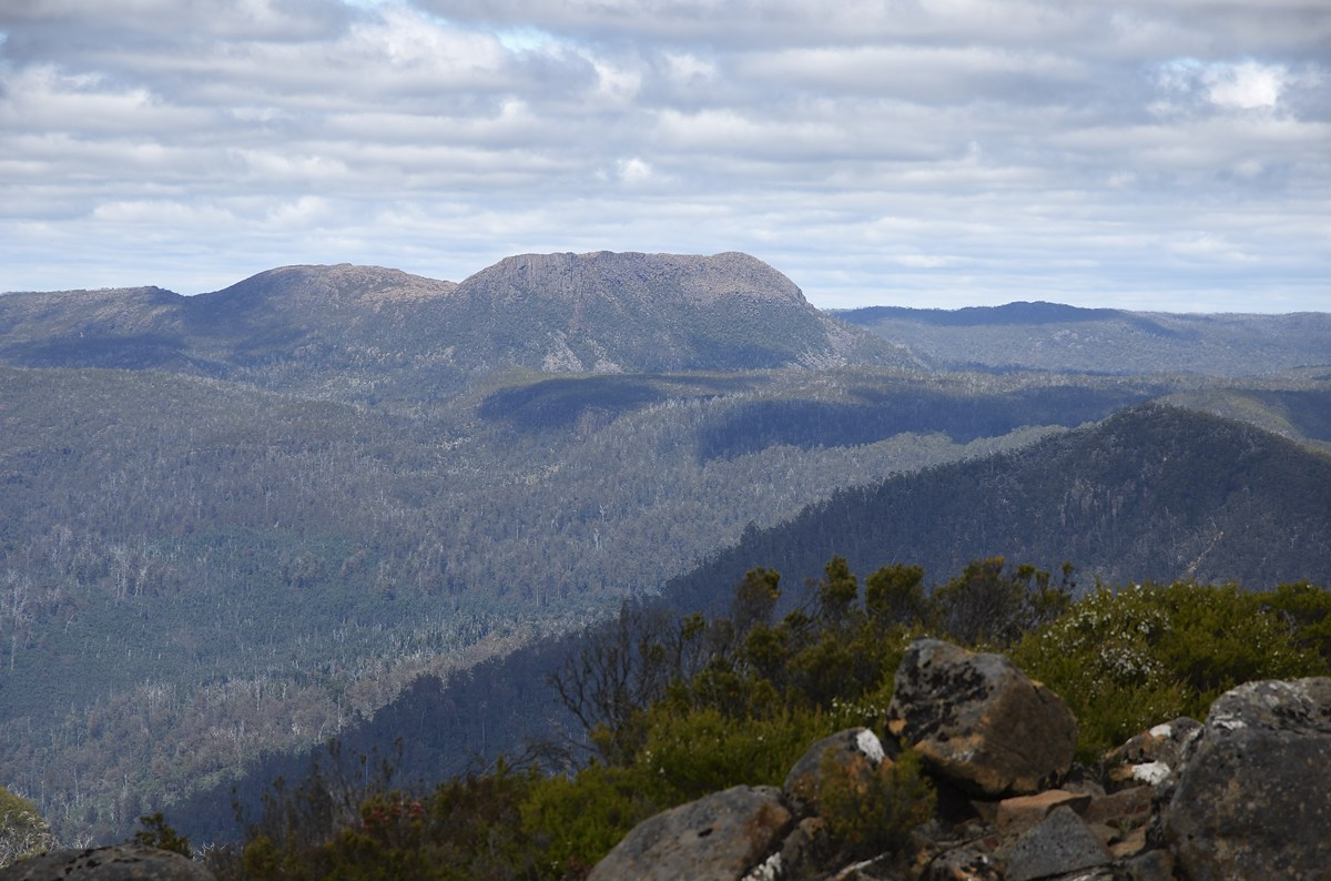 Mount Rogoona from Mount Pillinger