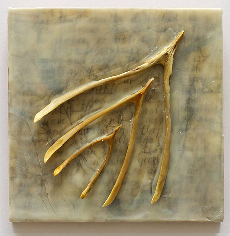 point by Dana Weir