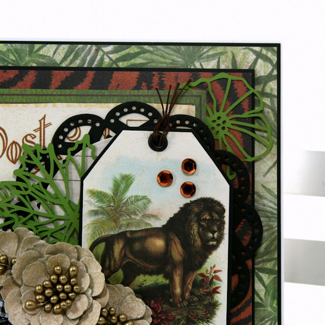 Jungle Life_Greeting Card_Ginny Nemchak_August6_04