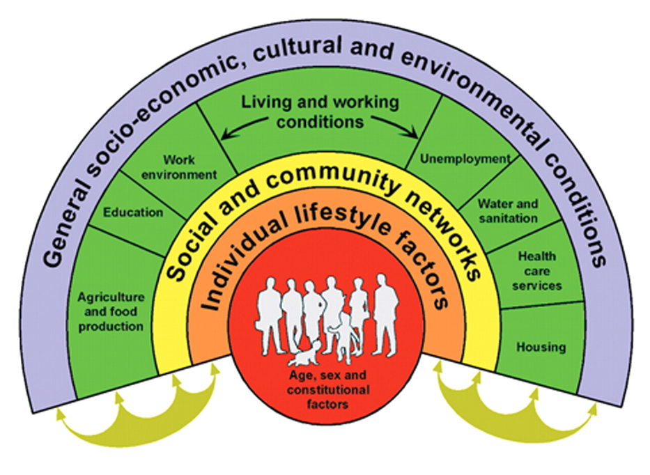 socioeconomic and government strategy influences on health Factors that influence health: an introduction  free course factors that influence health: an introduction  4 social and community influences.