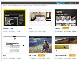 How to Customized your WordPress.com Blog