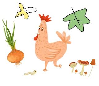 Dampak buruk, efek negatif vegetarian bagi seluruh dunia