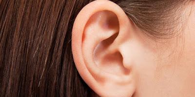 Telinga adalah indera yang paling berharga bagi manusia