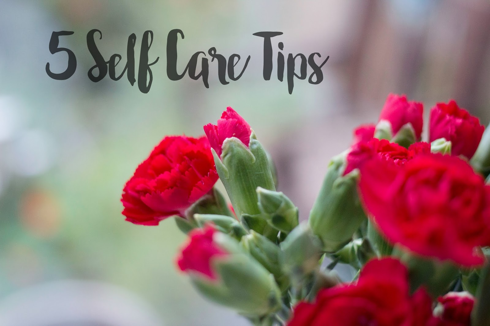Self Care Tips, How to treat yourself, Carnations, Katie Writes,
