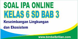 Soal IPA Online Kelas 6 SD Bab 3 Keseimbangan Lingkungan dan Ekosistem - Langsung Ada Nilainya